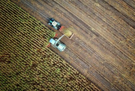 Overhead view of crop harvestins