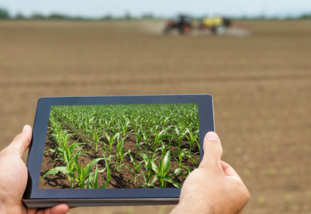 Looking at tablet while out in the field